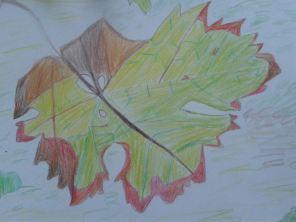 Herbstblattgemalt2